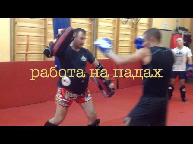 Тренировка в клубе тайского бокса и кикбоксинга BULAT GOLD