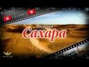 60 Пустыня Сахара Тунис