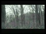 Vinterriket - Grauweiss (DVD rip 2011)