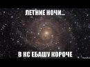 ZonT плей лайв (ночной) 2
