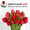 Цветы Роза Березники