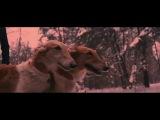 Dilara - Running (Official Music Video)