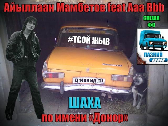 Айыллаан Мамбетов feat Aaa Bbb - Шаха по имени донор (cover В. Цой)