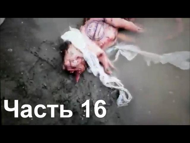 Чернобыльский мутант Руcалка и другие загадочные существа снятые на видео