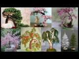 Сакура дерево из бисера мастер класс с пошаговым фото