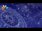 Астропрогноз на 5 - 11 сентября от Мольфарки Магдалены – Все буде добре. Выпуск 873 от 05.09.16