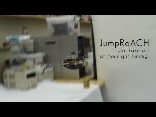 Новый прыгающий робот таракан JumpRoACH (Robotics.UA)