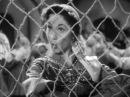 Лолита Торрес в эпизоде из фильма Возраст любви 1954г.