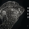 19-20 АВГУСТА | RADIOSHOW FLTBT: RA + V-ROX