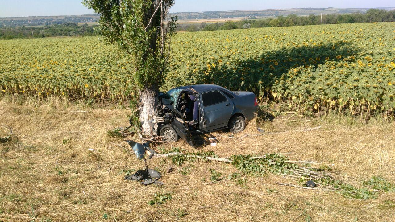 Утром под Таганрогом Lada Priora врезалась в дерево, двое пострадавших