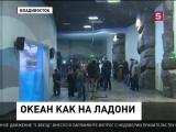 Во Владивостоке готовятся к открытию крупнейшего в России океанариума