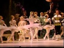 ARCHIVIO IEM P I Tchaikovsky The Sleeping Beauty Op 66 Mariinsky Orchestra and Ballet