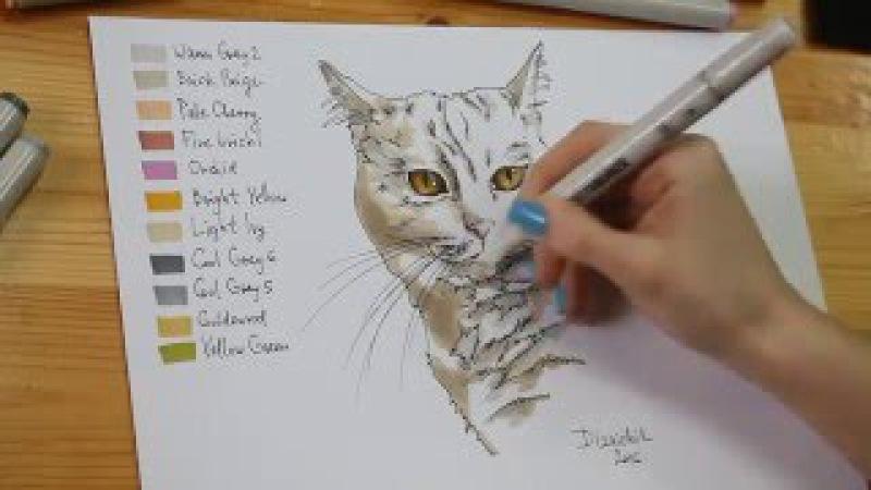 Скетчинг маркерами. Рисуем кота