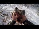 Охота 85 на кабана, загрыз поросенка, застрял на джипе