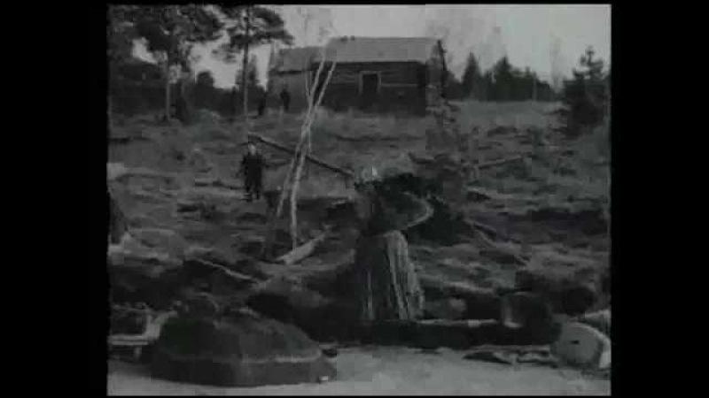 Kalastusta Itä-Karjalassa ja kuljetuksia poroilla Petsamossa. Puolustusvoimain katsaus 20, 1941