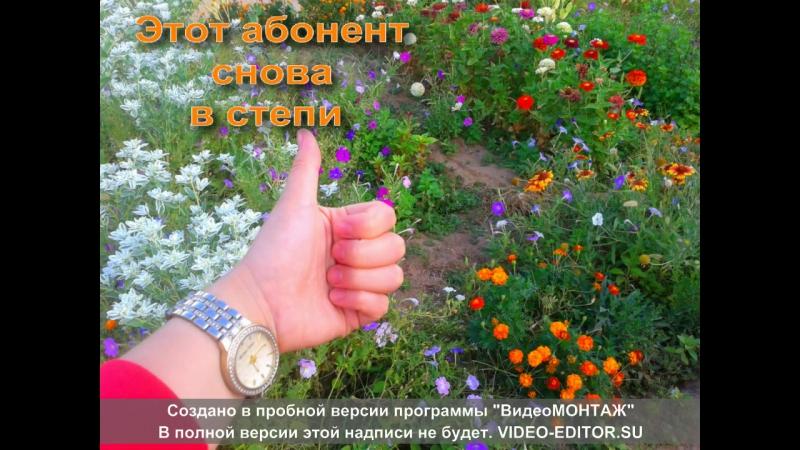 Калмыцкая степь 14 августа 2016 г.