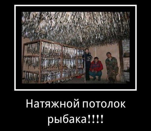 http://cs631222.vk.me/v631222408/1701a/ZWKww_5QwV4.jpg