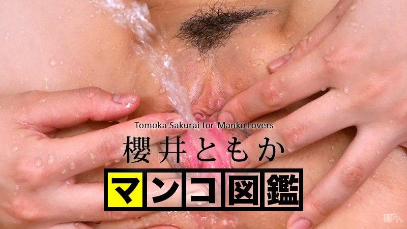 Caribbeancom 121515-001 Tomoka Sakurai