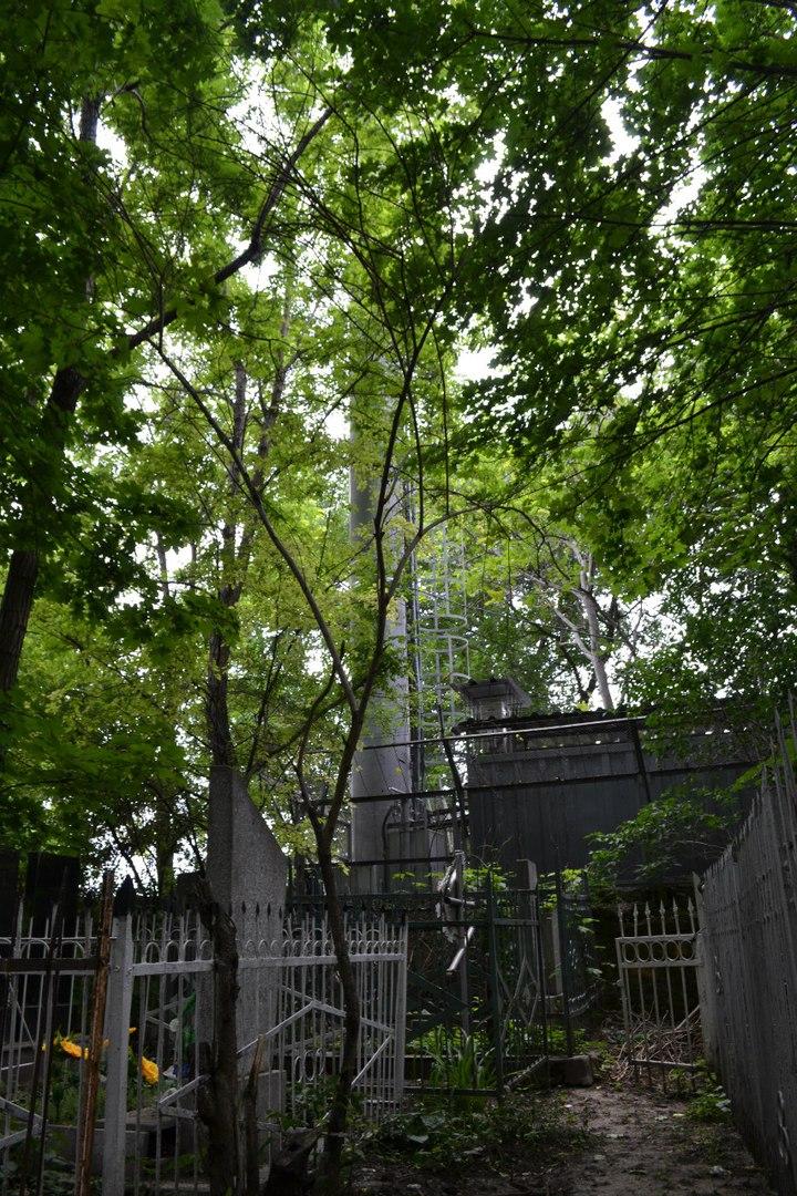 Украина. Одесса. Офицерское кладбище. Июнь 2016 г. (фото и описание) Bw53YAD5R2o