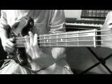 Bass Lesson T.M. Stevens - Hair