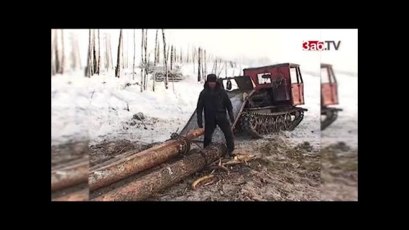Китайцам отдают 2 млн. гектаров русской земли в Забайкалье (2015)
