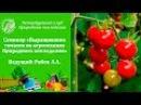"""Семинар """"Выращивание  томатов по агротехнике Природного земледелия"""""""