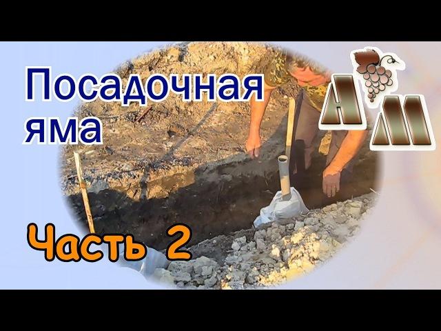 🍇 Посадочная яма для винограда (часть 2). Заполнение грунтом, удобрение