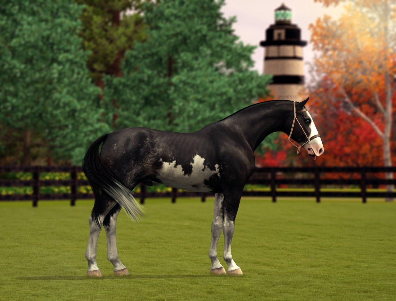 Регистрация лошадей в RHF 2 - Страница 38 BPS4VsvzLfw