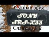 Обзор басистой портативной аккустики SONY SRS-X33