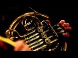 IP Orchestra РОК-ХИТЫ