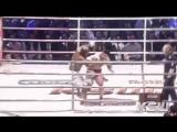 Чеченские и Дагестанские Бойцы в MMA