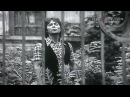 Cliff Richard | I Wish You'd Change Your Mind | USSR | 1976 |