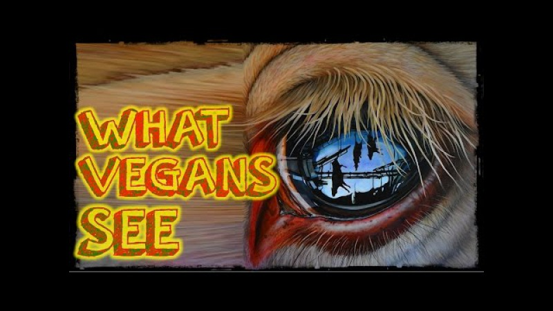 What Vegans See | A Video For Non Vegans [NOT Graphic]