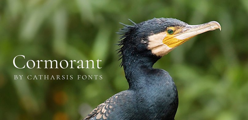 Download Cormorant Install v3.0 font (typeface)