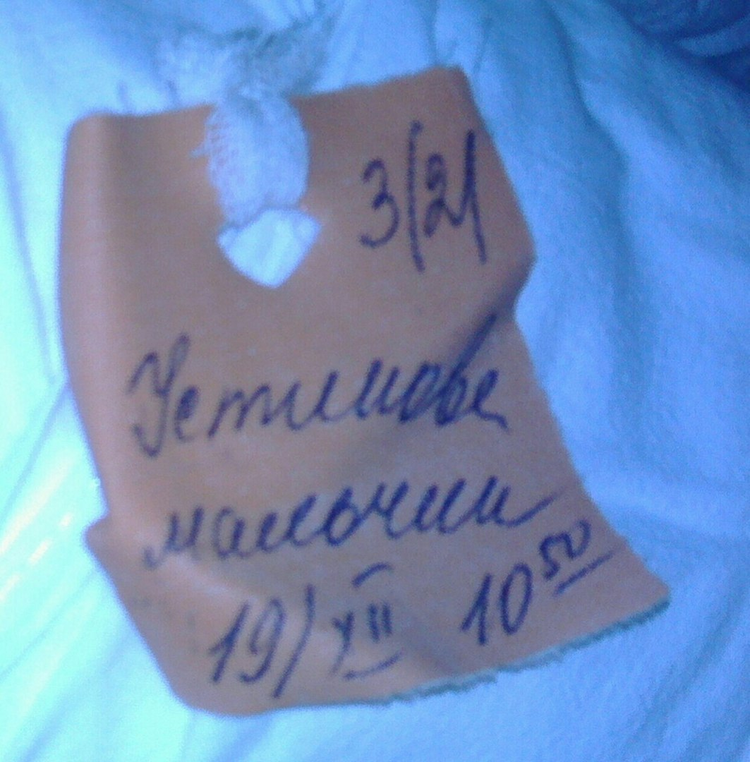 Евгешка Устинова, Гумнищи - фото №12