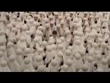 Джеки в царстве женщин (2013) трейлер (на русском)