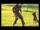 EXTREME OREX AYKMAR - DEFENCE - 4 MONTHS - Ludslavice, h: Polzer David