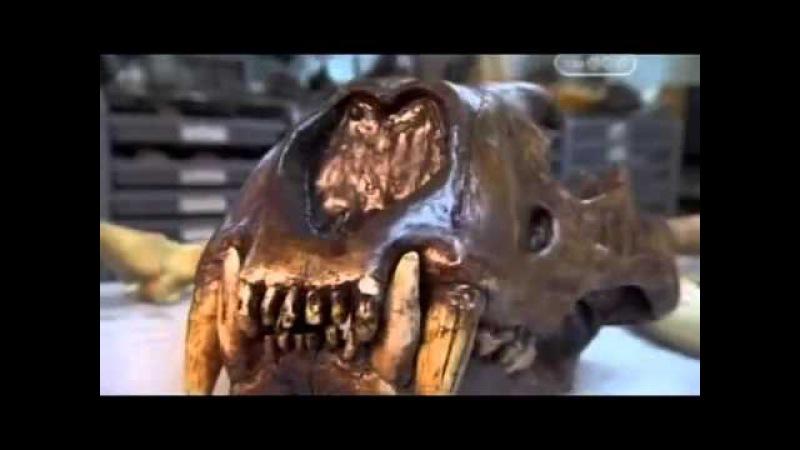 Монстры ледникового периода.Древняя палеонтология.Затерянные миры