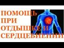 Сильное сердцебиение и одышка. Как убрать без лекарств. Николай Пейчев.