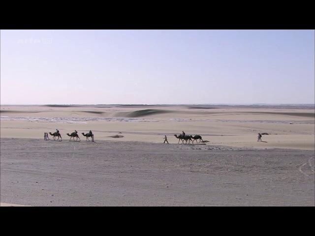 Loasis de Siwa en Egypte