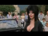 Elvira: Mistress of the Dark (Эльвира: Повелительница тьмы)