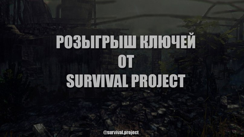 survival project