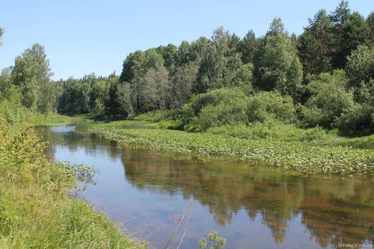 Река Шишим