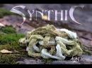 Synthic vs Sphagnum 1