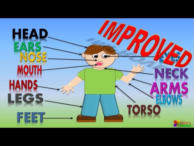 Body Parts For Children with song, Partes del Cuerpo con canción en Inglés para NIños NEW!