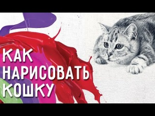 Как нарисовать кошку и сделать рисунок особенным? Советы как нарисовать кошку.