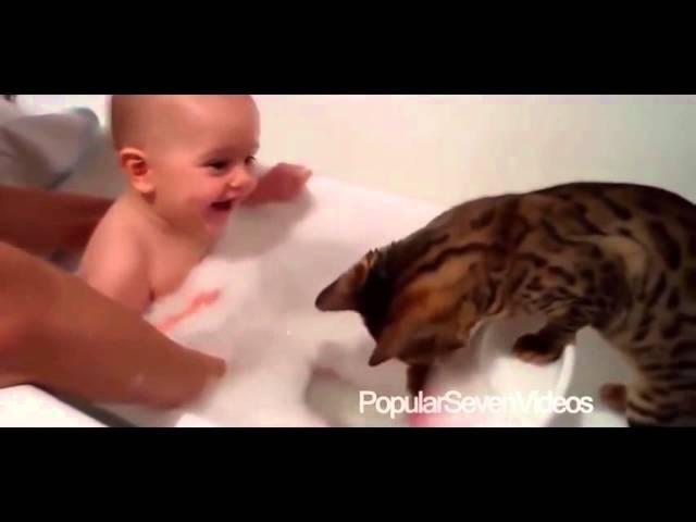 Bebeklerin Sevimli Kedi ve Köpeklerle Oynama Videoları Hepsi