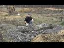 Как мы делаем теплые грядки в нашем Родовом Поместье ПРП Емельяновка