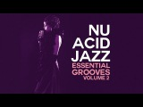 Acid Jazz Essential Grooves vol.2 - Best Selection