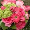 Отличные цветы в НижнемНовгороде - Купить Цветы.